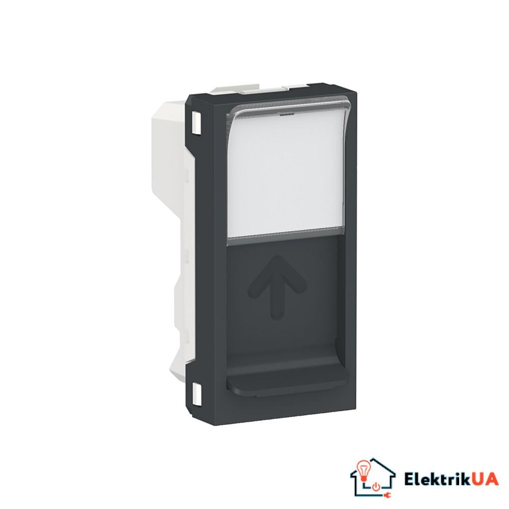 Центральна плата RJ45Keystone/Systimax 1 модуль антрацит